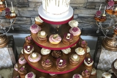 Engagement-Cupcakes